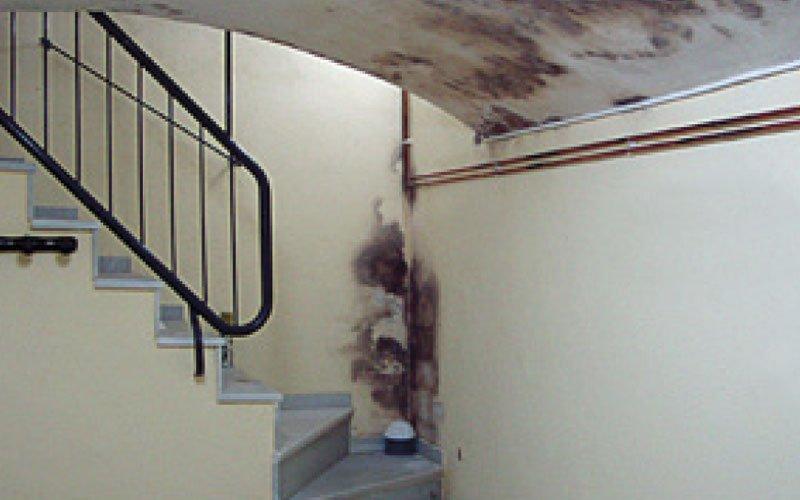 solucions de problemes d'humitats i degoters a les parets de soterranis