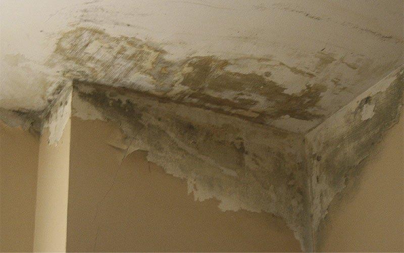 solucions de problemes d'humitats i degoters a les parets